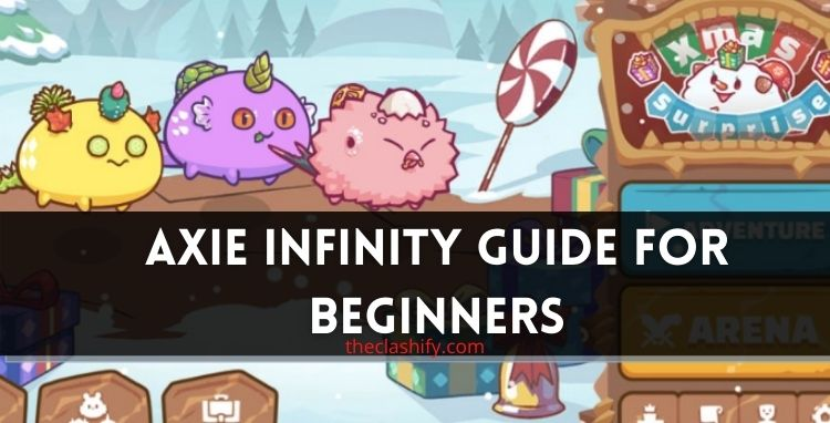 Axie Infinity Guide for Beginners 2021 ( Best Team )