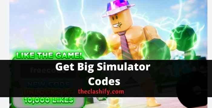 Get Big Simulator Codes